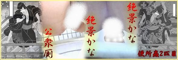 【洗面所盗撮 便所蟲リターンズ2匹目】