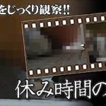 <緊急レビュー>休み時間の女良のトイレ Vol/01